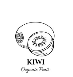 hand drawn kiwi icon vector image