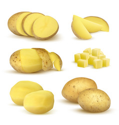 Realistic potatoes grocery natural products vector
