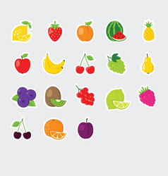 Set colorful fruit icons vector