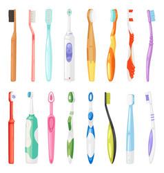 toothbrushe dental hygiene tooth brush for vector image