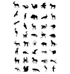 world of animal vector image