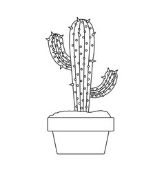 monochrome silhouette with cactus with two vector image