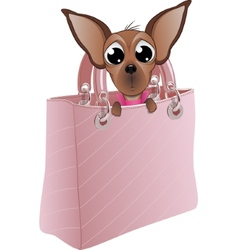 Dog in a glamorous handbag vector