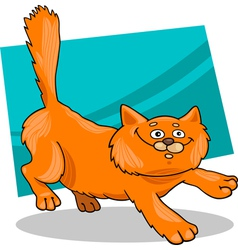 fluffy red cat vector image
