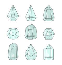 Glass terrariums for succulent plants set vector