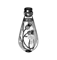 Hand sketched bottles with flower extract vector