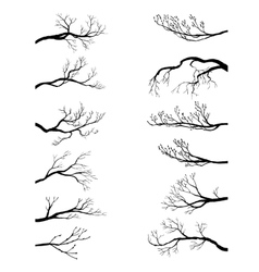 Set tree branches vector