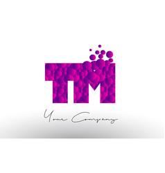 Tm t m dots letter logo with purple bubbles vector