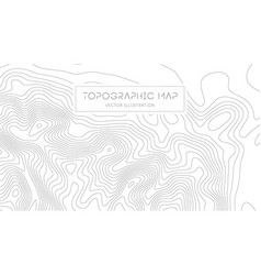 Topographic map on white background topo map vector