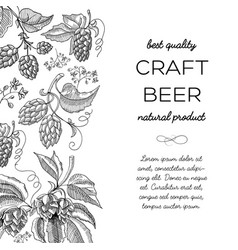 black and white colored hop doodle vector image