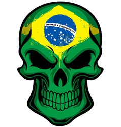 Brazil flag painted on skull vector