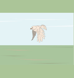 bird flying in nature vector image