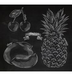 Fruit cherry mango pineapple chalk vector
