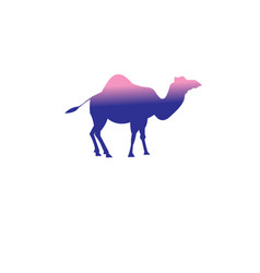icon a camel vector image