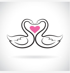 two loving swans and pink heart on white vector image