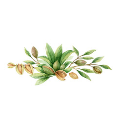 Watercolor wreath fruits and leaves vector