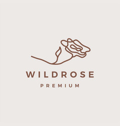 wild rose flower logo icon vector image