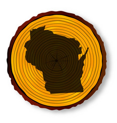 wisconsin map on timber vector image