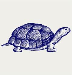 Ear tortoise vector image vector image