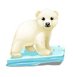Cute polar bear floats on a drifting ice floe vector