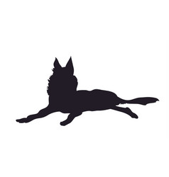 dog lies silhouette vector image