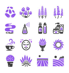 Lavender icon vector