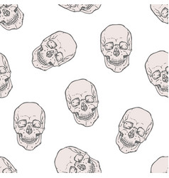 seamless pattern with realistic human skulls on vector image