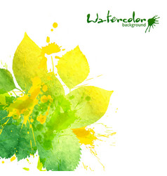 Watercolor texture and splashes green leaves vector image