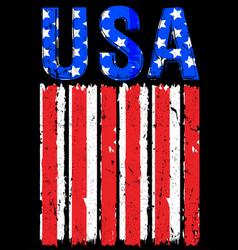 american flag usa vector image