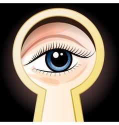 Look through a key hole vector image
