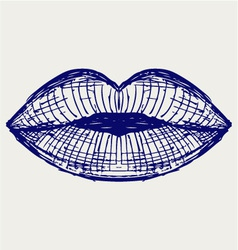 Woman lip mouth kiss vector image vector image