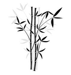 bamboo vector image