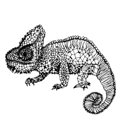 Hand-drawn chameleon page vector image