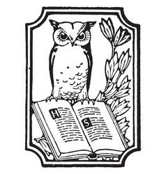 Owl and book vintage vector