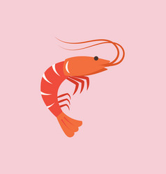 shrimp in flat style vector image