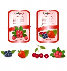 two labels with cranberries vector image