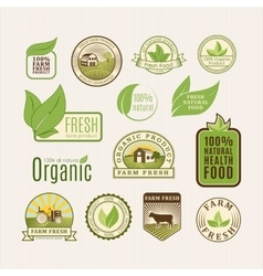 Eco badge organic food vector image