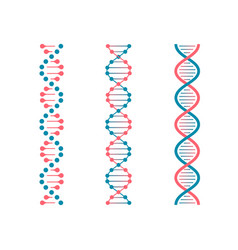 chemistry code dna double genetic code of human vector image