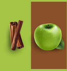 Cinnamon and green apple vector