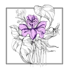 sketch flower bouquet in frame vector image
