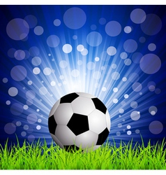 soccer football vector image