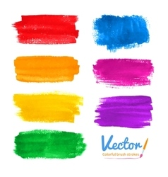 Colorful brush strokes vector image vector image