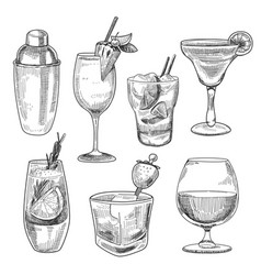 Alcoholic cocktails sketch vector