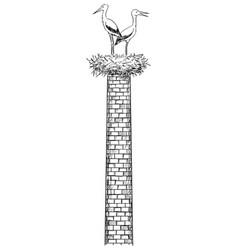 Cartoon pair white storks birds in nest on vector