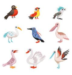 Collection of beautiful birds crane stork swan vector