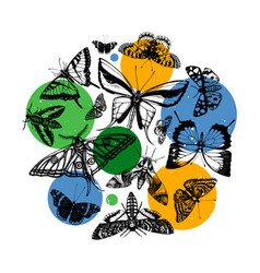 composition high detailed insects sketches vector image