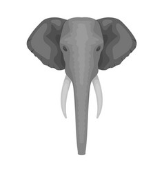 elephant icon in monochrome style isolated on vector image