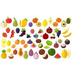 fruits icon set vector image