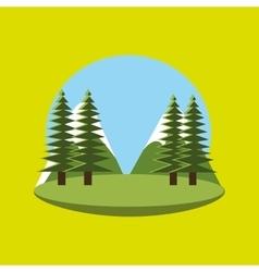 pine tree design vector image