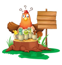 Chicken and eggs vector image